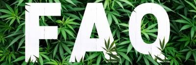 Cannabis FAQ