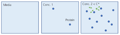 Protein Interaction on Concentration