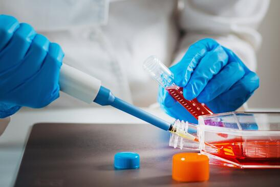Scientist - Cell Culture